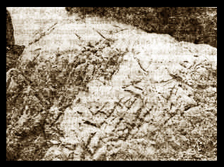 Таинственные знаки – «руны» на шарташских камнях